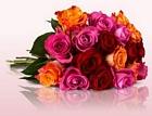 Miflora: Diverse günstige Blumensträuße ab nur 15,00 Euro